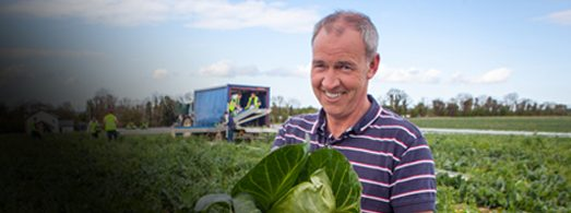 Meet our local growers  Say Hi to Cahal Lenehan