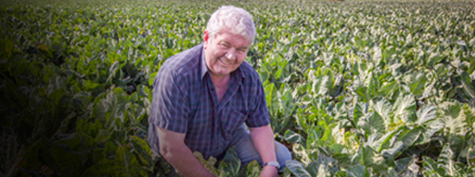 Meet our local growers  Say Hi to Denis Hartford