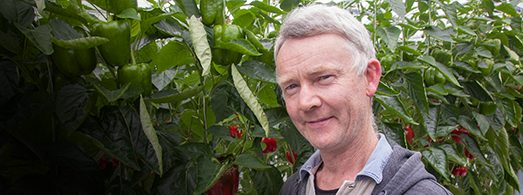 Meet our local growers Say Hi to Martin Flynn