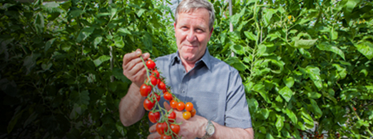 Meet our local growers  Say Hi to Jim O 'Rourke